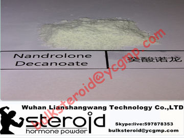 China Pó esteroide 601-63-8 de Cypionate do Nandrolone do halterofilismo da pureza de 99% fornecedor