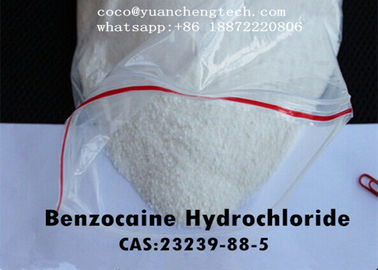 China O anestésico local droga a categoria do hidrocloro do Benzocaine/HCl USP de Benzociane fábrica